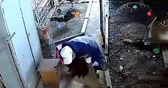 chống trộm chuồng gà