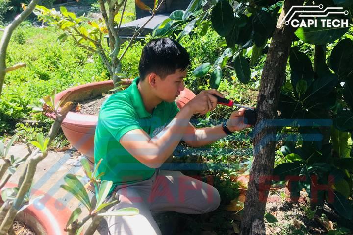 lắp đặt thiết bị chống trộm laze cho vườn cây capitech.vn