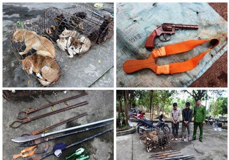8 vụ trộm chó bị đánh chết